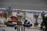 2013 IBSF Snooker Championship - LATVIA (8 Dec 2013) 頒獎禮 PRIZE PRESENTATION